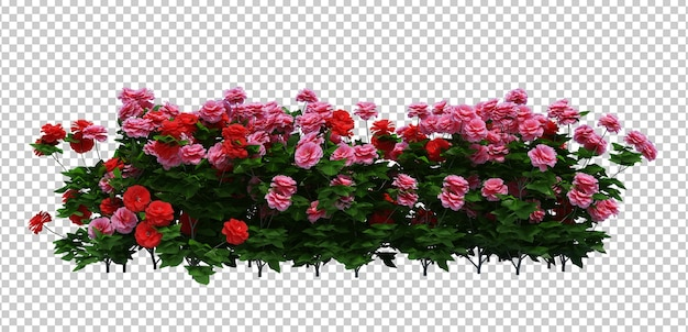 3d render of brush tree with flowers isolated