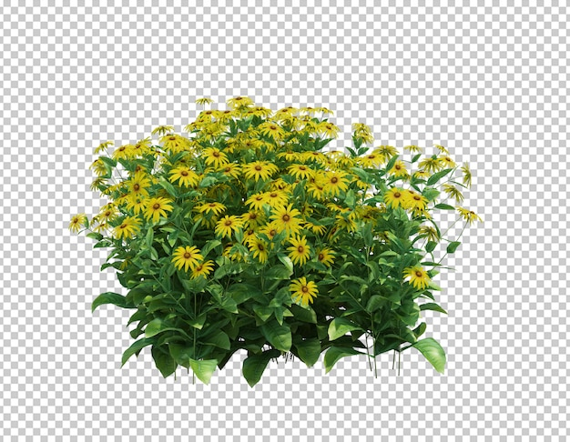 3d render of flowers with leaves