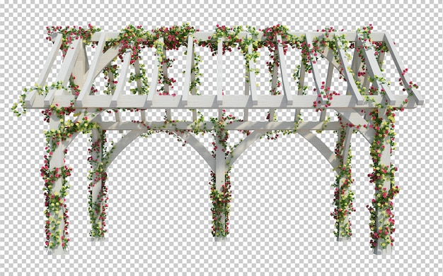 3d render ivy plants  isolated  on white background