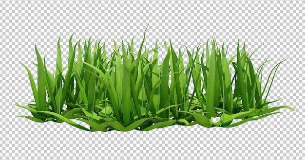 3d render of long green grass
