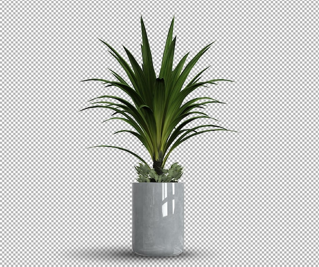 ポット内の孤立したリアルな植物の3dレンダリング