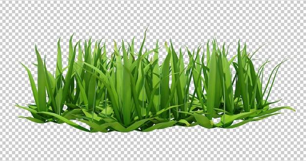 긴 녹색 잔디의 3d 렌더링