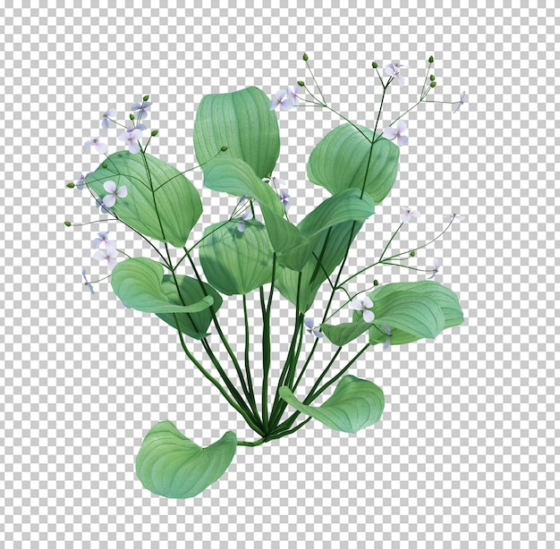 3d render pond tree isolated  on white