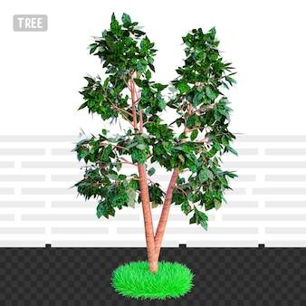 3d 렌더링 건축 나무