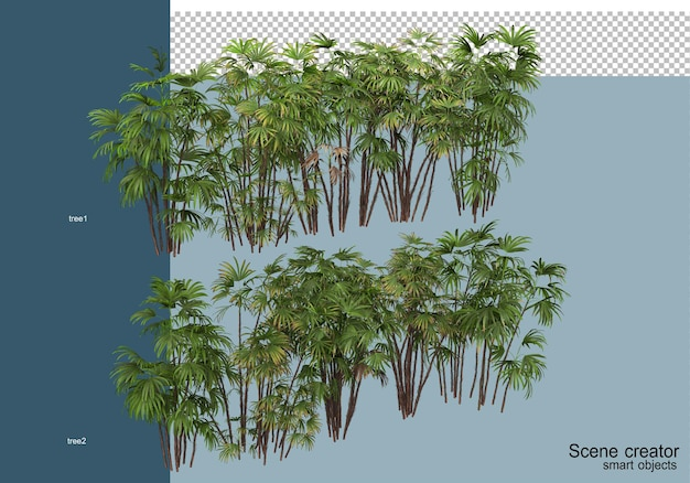 3d rendering of beautiful plants in various angles isolated