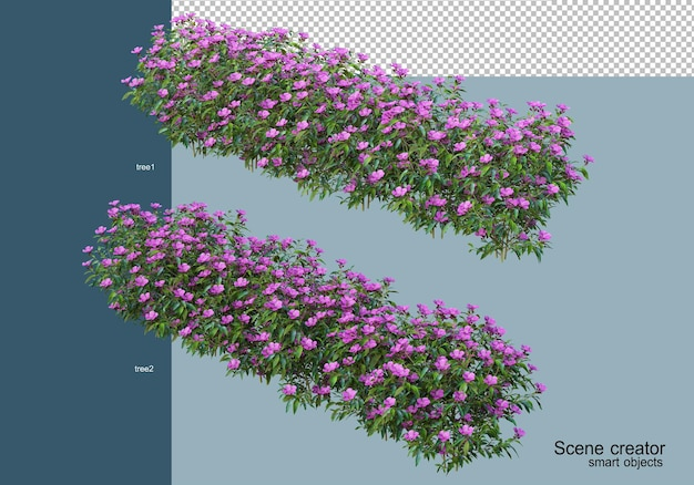 3d rendering of beautiful shrubs in various angles isolated