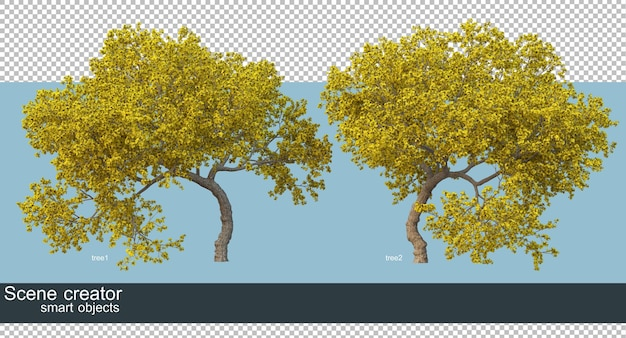 3d rendering of beautiful trees in various angles isolated Premium Psd
