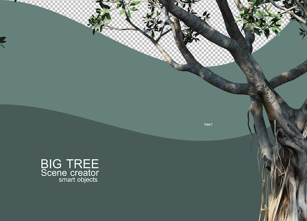 3d rendering of big tree arrangements