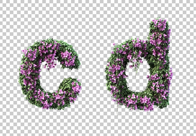3d rendering of bougainvillea letter c and letter d