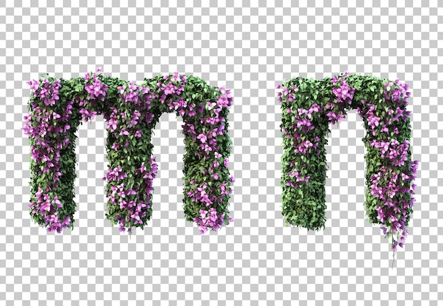3d rendering of bougainvillea letter m and letter n