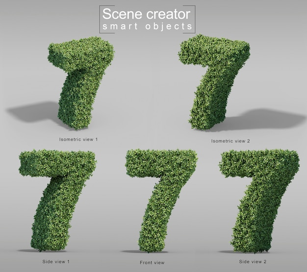 3d rendering of buxus number 7
