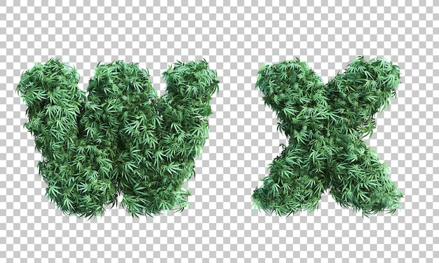 3d rendering of cannabis letter w and letter x
