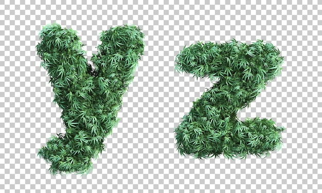 3d rendering of cannabis letter y and letter z