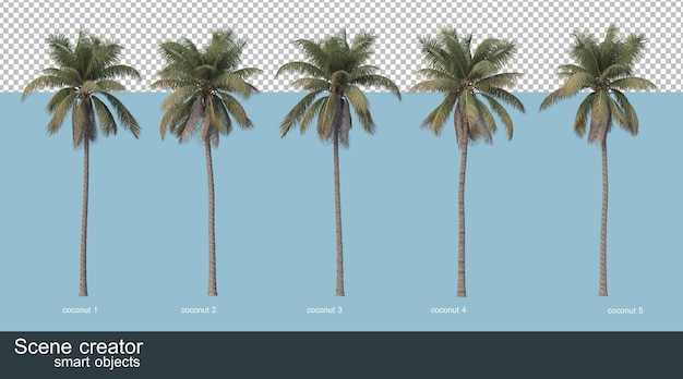 3d rendering of coconut trees and palm trees Premium Psd