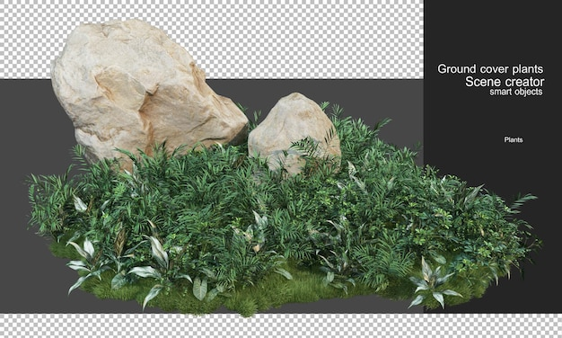 3d rendering of cover plants and large rocks
