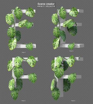 3d rendering of creeping monstera on alphabet e and alphabet f