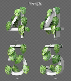 3d rendering of creeping monstera on number 4 and number 5