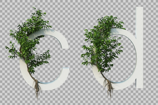3d rendering of creeping tree on alphabet c and alphabet d