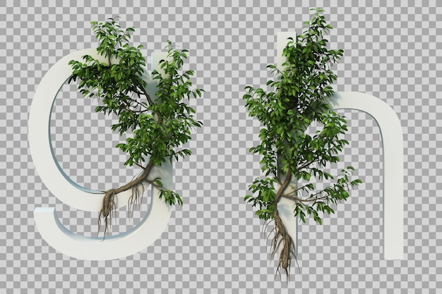 3d rendering of creeping tree on alphabet g and alphabet h