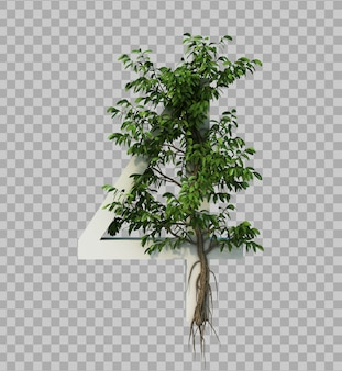 3d rendering of creeping tree on number 4