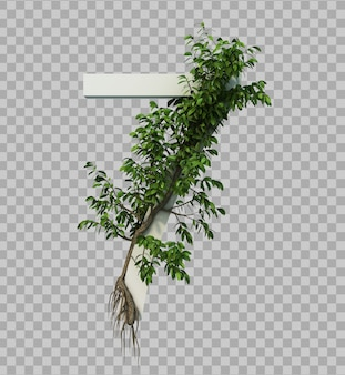 3d rendering of creeping tree on number 7