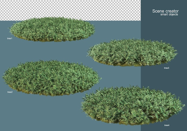 3d rendering the flower field arrangement