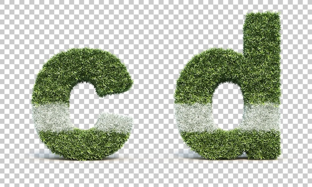 3d rendering of grass playing field alphabet c and alphabet d