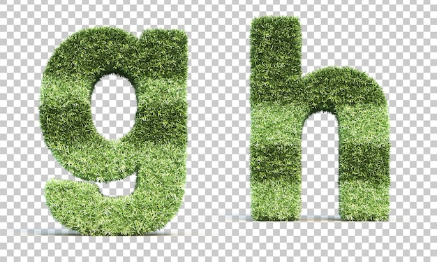 3d rendering of grass playing field alphabet g and alphabet h
