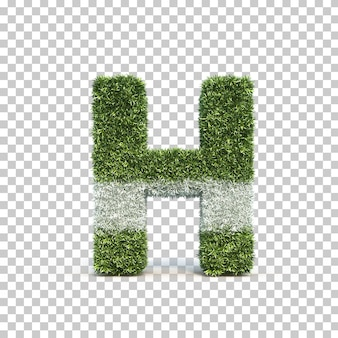 3d rendering of grass playing field alphabet h