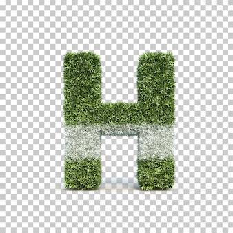 3d rendering of grass playing field alphabet h