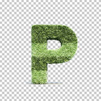 3d rendering of grass playing field alphabet p