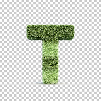 3d rendering of grass playing field alphabet t