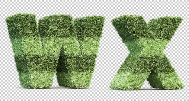 3d rendering of grass playing field alphabet w and alphabet x