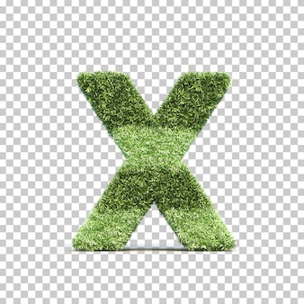 3d rendering of grass playing field alphabet x
