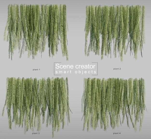 3d rendering of hanging ferns