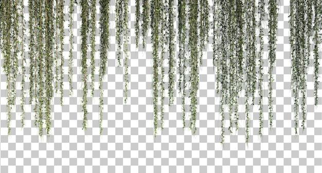 3d rendering of hanging plant set