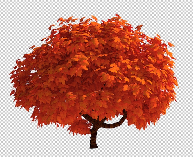 3d rendering of isolated tree