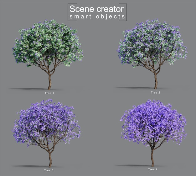 3d rendering of jacaranda mimosifolia trees