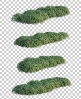 3d rendering of japanese forest grass