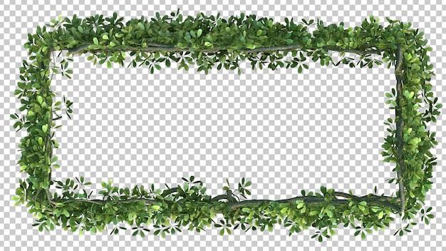 3d-рендеринг прямоугольной рамки дерева акебия