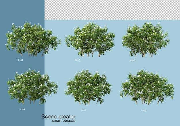 木と花の配置の3dレンダリング