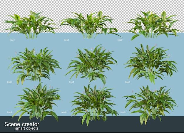 分離されたさまざまな角度で美しい茂みの3dレンダリング