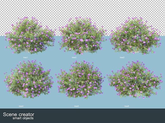 고립 된 다양 한 각도에서 아름 다운 식물의 3d 렌더링
