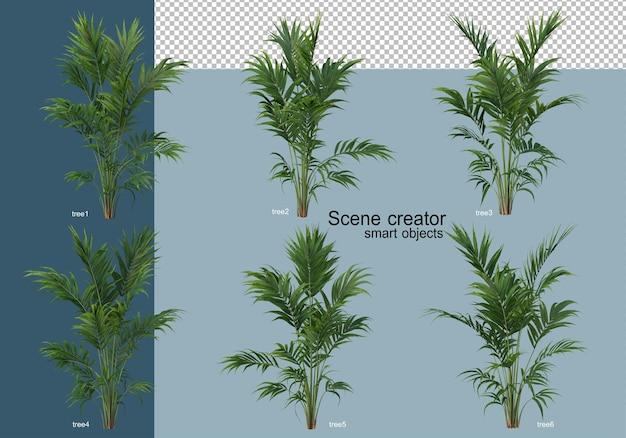 3d-рендеринг красивых деревьев под разными углами изолированы