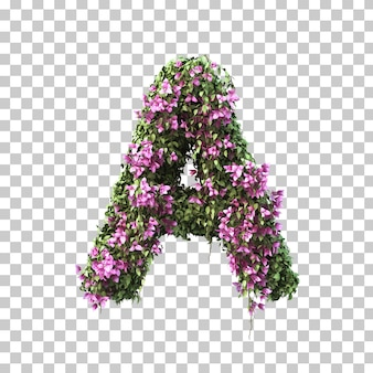 부겐빌레아 알파벳 a의 3d 렌더링
