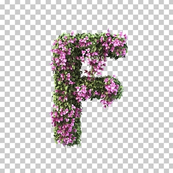 3d-рендеринг бугенвиллии алфавита f