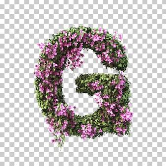 3d-рендеринг бугенвиллии алфавита g