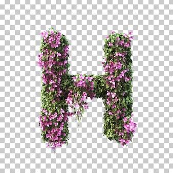 부겐빌레아 알파벳 h의 3d 렌더링
