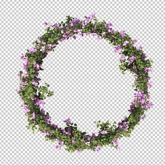 3d-рендеринг рамки круга бугенвиллеи