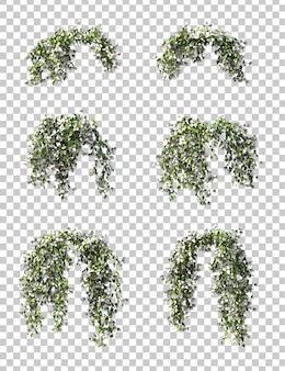3d-рендеринг бугенвиллии, подвесной набор